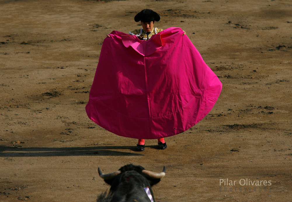 "Spanish bullfighter Julian Lopez ""El Juli"" waits for the bull during a bullfight at the Plaza de Acho bullring in Lima November 25, 2007."
