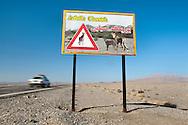 Cheetah road sign, Naybandan Wildlife Reserve, Iran