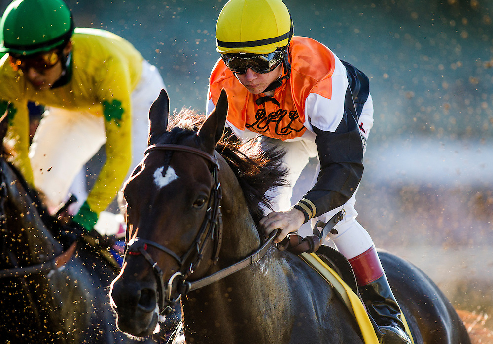 September 26 2015: Jockey, Drayden Van Dyke rides Global View in the Awesome Again Stakes at Santa Anita Park, Arcadia CA. Alex Evers/ESW/CSM