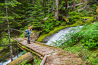 A woman stopping on a bridge over a mountain stream to take a picture, Mount Rainier National Park, Washington, USA.