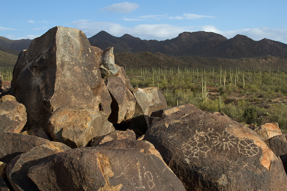 A short climb up Signal Hill in Saguaro National Park, takes you to dozens of ancient Hohokam petroglyphs along the hillside.  The Hohokam people migrated from Mexico to southern Arizona in 1 AD and remained in the area until 1450.