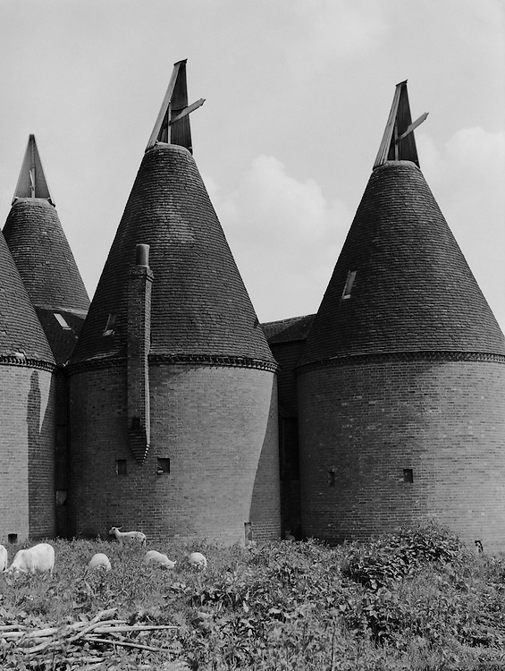 Oasthouses, Horsemonden, Kent, England, 1932