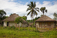 Thatch roofed houses in the Macurije area, Pinar del Rio, Cuba.