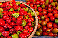chilies and tomatoes for sale Rantepao, Sulawesi, Indonesia