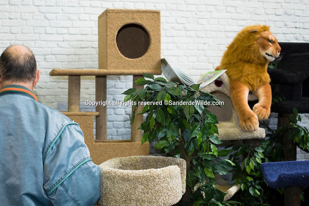 sfeerbeelden Kattententoonstelling in Turm & Taxis Brussel