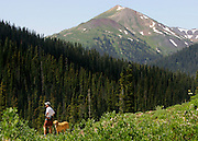 """A hiker and his dog take in the view along the trail on the hike between Crested Butte and Aspen, Co. Aspen and Crested Butte are hours apart by car and probably worlds apart in attitude but only separated by 24 miles on a map. Many hikers are starting to take one of a number of mountain passes on foot and stay the night in the other town and then hike, bike, drive or fly back the following day. Depending on the route chosen and the ability of the hiker, it takes about 5 to 9 hours to hike between the two towns. Most hikers choose the trails that converge on 12,490-foot West Maroon Pass ? the shortest of the available options at 10.5 miles. The trail offers a steady uphill from either side, with ample time to prepare for the last steep and loose rocky sections before the pass.The historic Town of Crested Butte is a Home Rule Municipality located in Gunnison County, Colorado, United States. A former coal mining town now called """"the last great Colorado ski town"""", Crested Butte is a destination for skiing, mountain biking, and a variety of other outdoor activities.The Colorado General Assembly has designated Crested Butte the wildflower capital of Colorado..(Photo by MARC PISCOTTY / © 2006)"""