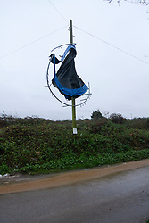 © Licensed to London News Pictures. 22/11/2012. Hayle, UK. A Trampoline hangs on a telegraph pole at Strawberry Lane, Hayle. Strong winds and heavy rain has caused flooding and damage throughout parts of the South West. Photo credit : Ashley Hugo/LNP