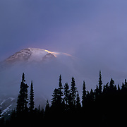 Huge Mt. Rainier peeks out momentarily through dense morniong fog in Mt. Rainier National Park, WA.