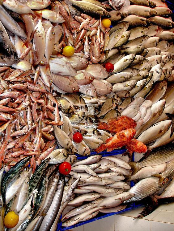 Fresh fish at grand bazaar in ku adasi turkey encircle for Nearest fresh fish market