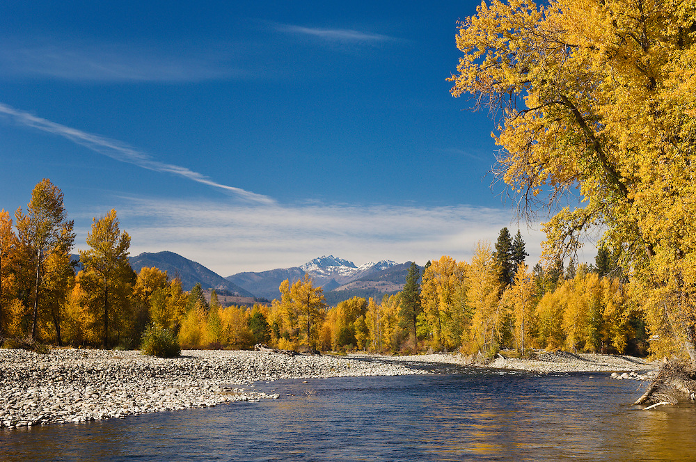 Methow River and Mount Gardner with Cottonwood trees in Autumn; Winthrop, Washington.