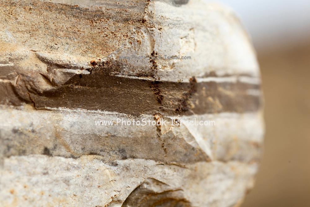 Rock strata closeup - sediment layers are visible