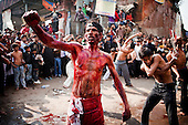 India: Ashura 2010 New Delhi