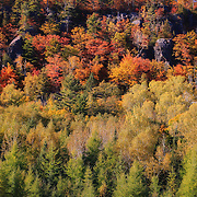 &quot;Autumn Color on Cliff Drive&quot; <br />