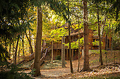 Keuka Lodge Fall Foliage