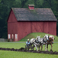 A one bottom riding-plow was demonstrated at the 1900 Farmstead which is a re-creation based on 1901 Agriculture plan.  .Horse Drawn Days was held Saturday, June 12, 2010 at Stonefield Historic Site near Cassville, Wisconsin.