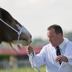 Newark and Notts County Show 2010<br />
