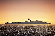 Kapiti Island at dusk, Wellington, New Zealand