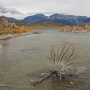 Mono Lake Reclaimed Shore - Incoming Storm