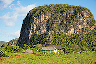 Farm and Mogotes, El Moncada, Pinar del Rio, Cuba.