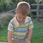 A small boy plays in a backyard sandbox on a sunny afternoon.