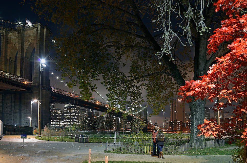 Night in Brooklyn Bridge Park.