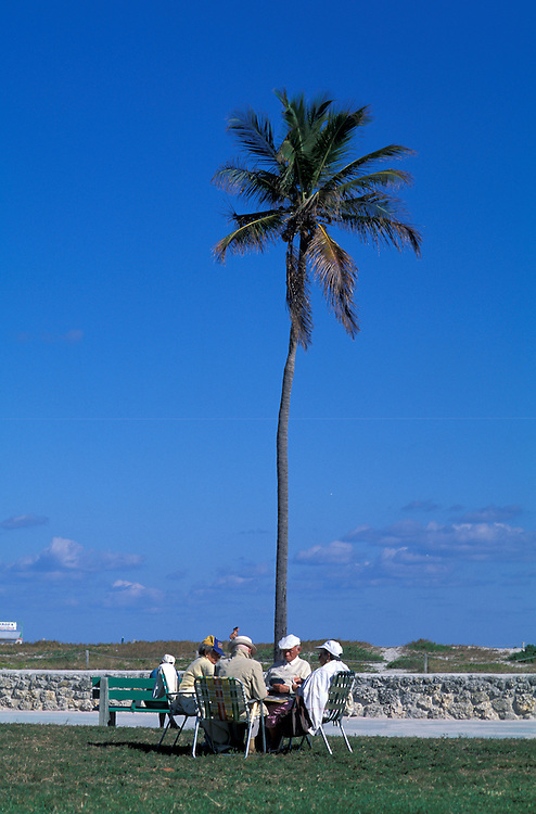 Retired people playing cards under palm tree, Miami Beach, Florida, USA