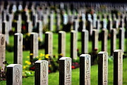 Israel, Jerusalem war cemetery, for British and commonwealth soldiers who died in Palestine during world war I in 1917. October 2006