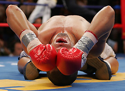 September 24, 2005; Atlantic City, NJ; Miguel Cotto celebrates after knocking out Ricardo Torres during their 12 round bout at Boardwalk Hall in Atlantic City, NJ.  Cotto fought back after being knocked down and badly hurt to stop Torres.