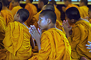 Novices at morning prayers in Chiangmai, Thailand.