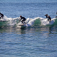 USA, California, San Diego. Surfers at Windansea, La Jolla.