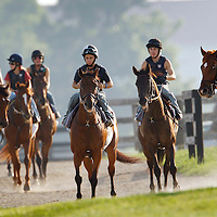 Students of the North American Racing Academy (NARA) headed for the track for some lessons at the starting gate at the thoroughbred training center in Lexington, Ky. on Friday, August 10, 2007.  Photo by David Stephenson | Staff 3798