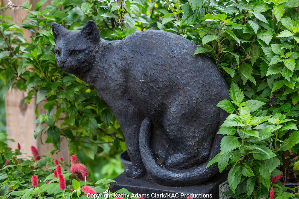 Statue of a black cat, cat's whisker, Garden, Houston, late summer, Texas.