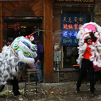(Boston, MA - 3/1/15) Members of the Wong Keung Lion Dance troupe perform to celebrate the Year of the Ram in Chinatown, Sunday, March 01, 2015. Staff photo by Angela Rowlings.