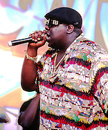 Notorious B.I.G. 1995.
