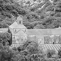 Abbaye Notre-Dame de Sénanque.  12th-century Cistercian monastery with summer lavender fields, church & cloisters. Provence, Luberon region