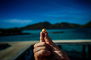 Jacques Branellec holds one of the natural golden pearls produced at his pearl farm in Shark's Fin Bay.  Tay Tay, Palawan, Philippines.