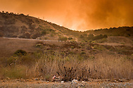 Brea Canyon Fire, Diamond Bar, Southern California