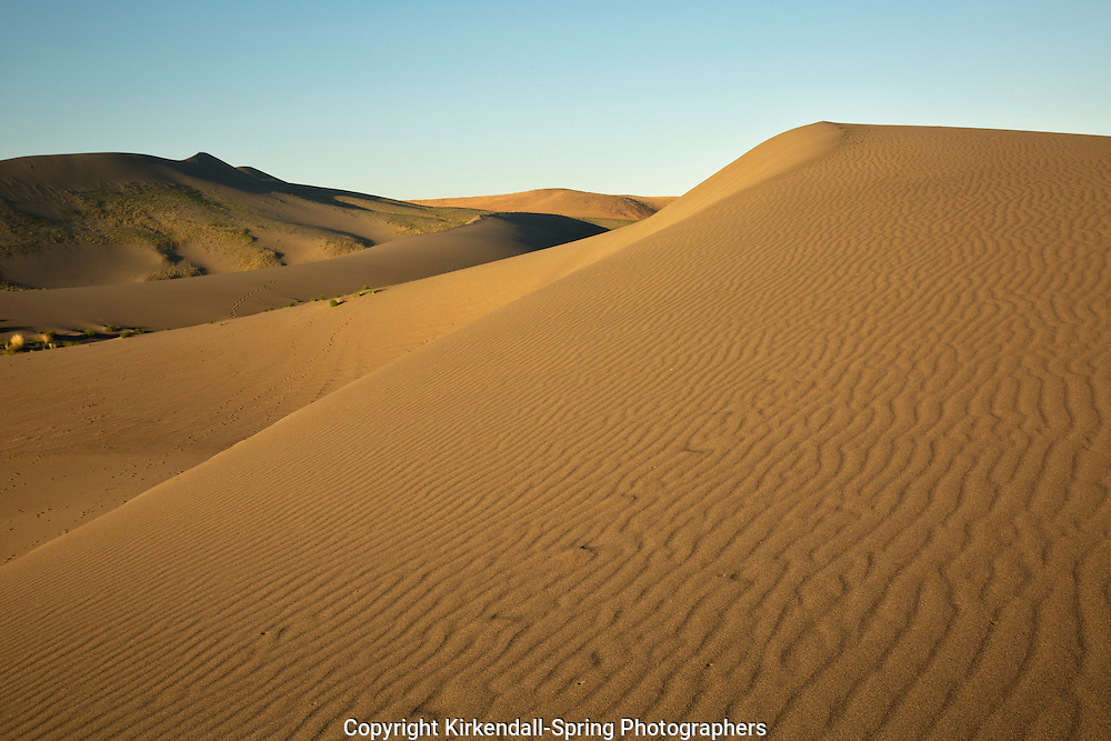 ID00665-00...IDAHO - Early morning on the sand dune at Bruneau Dunes State Park.
