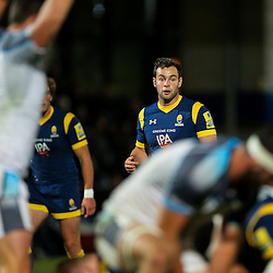 Worcester Cavaliers v Newcastle Falcons