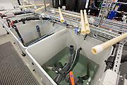 Aarhus University Aquarium. Experimental Recirculation System for tropical fish species.