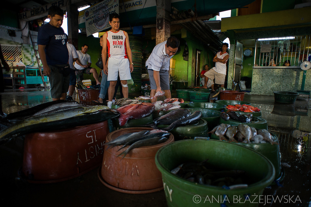 Philippines, Metro Manila. Seafood market in Navotas it's at its best early in the morning when the fishermen are coming from the sea with the fresh catch.