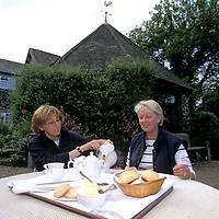 UK. Clotted Cream with tea and Scones..Photo©Steve Forrest/Workers' Photos.