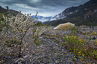 Camping in the rain by Carretera Austral, Chile