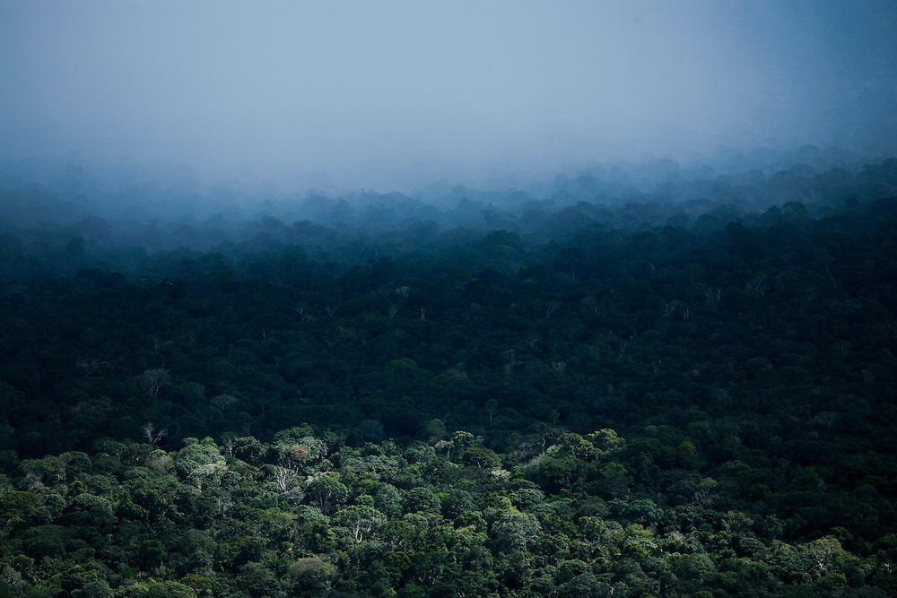 Rain falls on the Amazon Rainforest near Santarem, Para State, Brazil, May 15, 2006. ©Daniel Beltra/Greenpeace