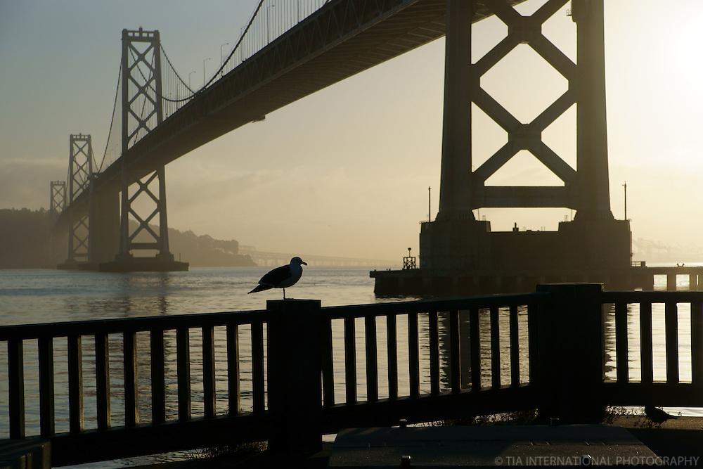 Bay Bridge & Embarcadero, Sunrise