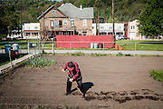 Frank Purrachio, 86, plants a row of vegetable in his backyard garden in West Aliquippa, Pennsylvania, USA on May 8, 2015. Purrachio, a retired millwright from the J&L Steel Works, has lived in West Aliquippa all of his life with the exception of a few years in the Marine Corps.