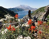 Washington: Mount Saint Helens