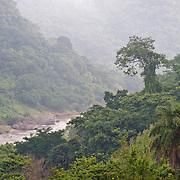 El río San Pedro Mezquital pasa por una zona poblada por selva baja, un ecosistema diverso y exuberante que cada vez es más escaso en la región.