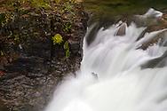 The Little Qualicum River in Little Qualicum Falls Provincial Park on Vancouver Island, British Columbia, Canada