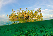 Palm trees and underwater view of San Blas Islands.